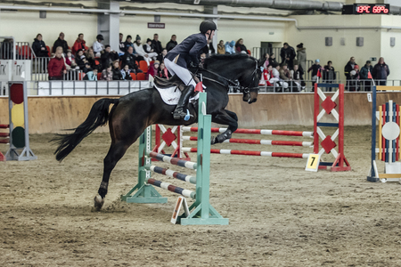 sports complex: Chelyabinsk, Russia - November 22, 2015: young male rider horse overcomes obstacles sports complex during Competitions Horse Show jumping