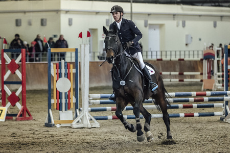 horse show: Chelyabinsk, Russia - November 22, 2015: young male rider on horse galloping across field sports complex during Competitions Horse Show jumping Editorial