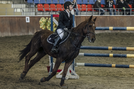 sports complex: Chelyabinsk, Russia - November 22, 2015: young female athlete horse galloping across field  sports complex during Competitions Horse Show jumping