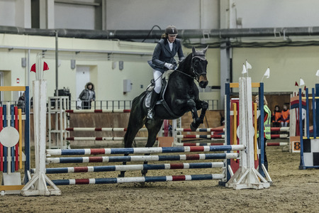 horse show: Chelyabinsk, Russia - November 22, 2015: woman athlete rider horse overcomes obstacles sports complex indoors during Competitions Horse Show jumping