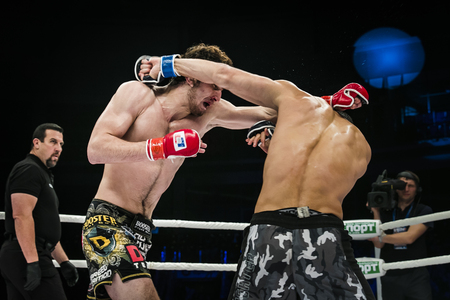 mma: Chelyabinsk, Russia - December 5, 2015: final fight of MMA fighters. referee John McCarthy during Cup of Russia MMA Editorial