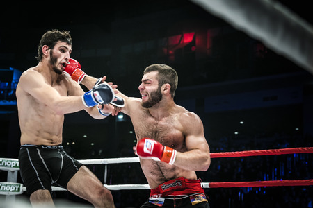mma: Chelyabinsk, Russia - December 5, 2015: MMA fighter gets a direct kick in head by his opponent during Cup of Russia MMA Editorial