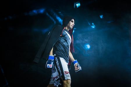 artes marciales: Chelyabinsk, Rusia - 5 diciembre 2015: Primer del atleta mezclado luchador de artes marciales durante la presentación antes de la pelea durante la Copa de Rusia MMA Editorial