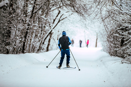 young men on skis in winter woods rides snow-covered alley in cold weather
