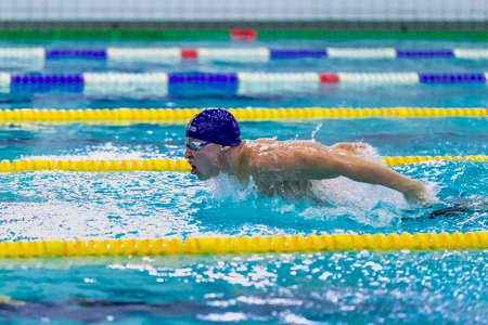 rivals rival rivalry season: Chelyabinsk, Russia - February 2, 2016: young male athlete swimming butterfly stroke in pool during Championship of Ural Federal District in swimming Editorial