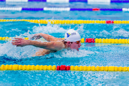 rivals rival rivalry season: Chelyabinsk, Russia - February 2, 2016: young male swimmer athlete swimming butterfly stroke in pool during Championship of Ural Federal District in swimming