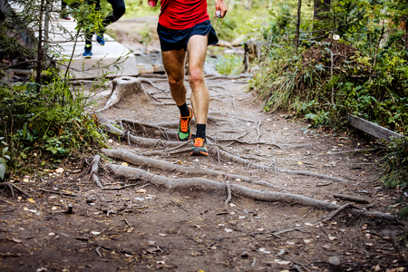 exposed: marathon runner running in woods trail earth and exposed tree roots Stock Photo