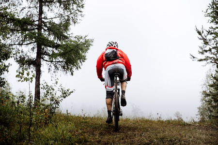 uphill: back racer mountainbiker riding uphill on bicycle in autumn forest