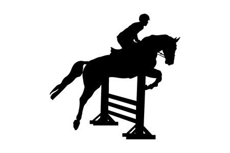 sport equestre cavaliere maschio cavallo concorso di salto ostacoli