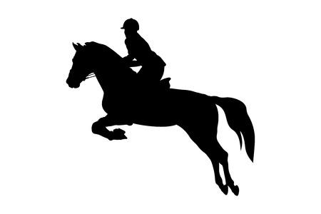 Reitsport Frau Reiterin Pferd Springen