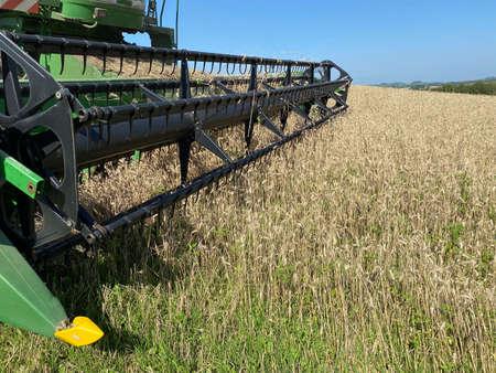 farmer on grain harvester harvesting wheat