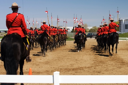 mountie: Ottawa Ontario Canada. May 2011. Each year before they start their tour, the RCMP musical ride performs an Inspectors Review, once approved they commence their summer tour.