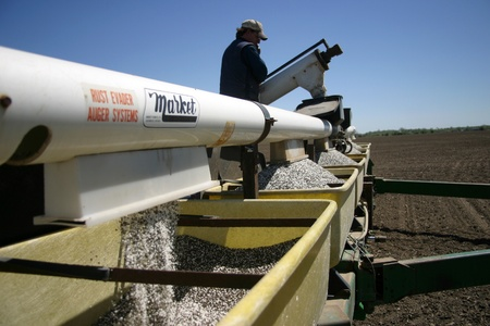 Parkhill Ontario, Canada - May 9, 2006. Rick Willemse loads his planter with dry fertilizer as prepares to plant seed for the upcoming growing season on his family farm in Southwestern Ontario.