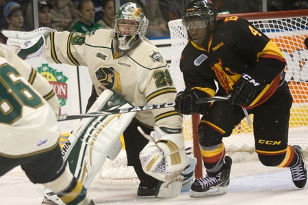 john labatt centre: London Ontario, Canada - October 21, 2011. Micheal Houser (29) of the London Knights repositions himself after making a save against Jordan Subban (4) of the Belleville Bulls. London won the game 4-0.  Editorial