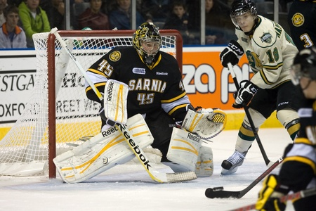 john labatt centre: London Ontario, Canada - October 30, 2011. Sarnia Sting goalie Brandon Maxwell keeps an eye on the puck during a game against the London Knights. London won the game 3-2 in an overtime shootout.