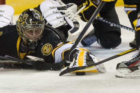 maxwell: London Ontario, Canada - October 30, 2011. Sarnia Sting goalie Brandon Maxwell stretches to smother a puck in a game against the London Knights. London won the game in an overtime shootout 3-2.