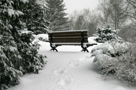 A park bench in sits covered with a fresh blanket of snow.