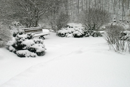 A bench in a city park is covered in a fresh blanket of snow.  photo