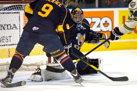 john labatt centre: London Ontario, Canada - November 25, 2011. Barrie Colt goalie Mathias Niederberger makes a save in a Ontario Hockey League game between the Barrie Colts and the London Knights. The visiting Barrie Colts won the game 6-2.