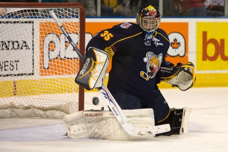 barrie: London Ontario, Canada - November 25, 2011. Barrie Colt goalie Mathias Niederberger makes a save in a Ontario Hockey League game between the Barrie Colts and the London Knights. The visiting Barrie Colts won the game 6-2.