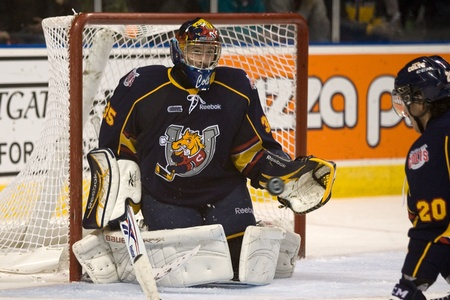 barrie: London Ontario, Canada - November 25, 2011. Barrie Colt goalie Mathias Niederberger prepares to make a save in a Ontario Hockey League game between the Barrie Colts and the London Knights. The visiting Barrie Colts won the game 6-2.