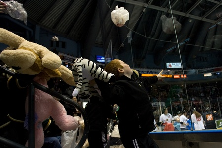 john labatt centre: London Ontario, Canada - December 16, 2011. Young fans throw stuffed teddy bears onto the ice in the annual Teddy Bear Toss in an Ontario Hockey League game between the London Knights and Guelph Storm played at the John Labatt Centre in London. The Knig Editorial