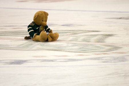 john labatt centre: London Ontario, Canada - December 16, 2011. Two of the 9851 teddy bears that were tossed onto the ice during the annual Teddy Bear toss in an Ontario Hockey League game between the London Knights and Guelph Storm played at the John Labatt Centre in London Editorial