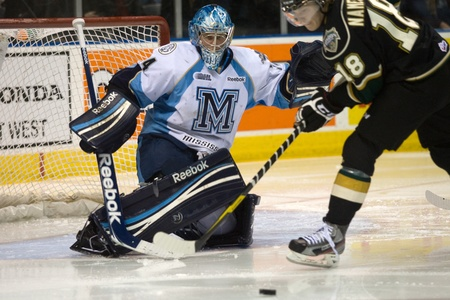 majors: London Ontario, Canada - February 4, 2012. Majors goalie Brandon Maxwell prepares to for a shot from Vladislav Namestnikov (18) of the Knights in a Ontario Hockey League game between the London Knights and the Mississauga St. Michaels Majors. London won t