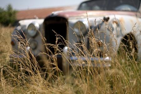 southwestern ontario: Kincardine Ontario, Canada - July 14, 2012. A 1952 Jaguar Mark VII sits in a farmers field in Southwestern Ontario, Canada.