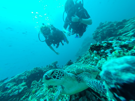 scubadiving: Two scuba divers , male and female, behind big sea turtle in the foreground in Lombok, Indonesia