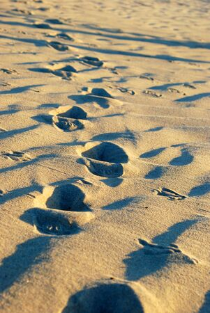 footsteps: Footsteps in sand Stock Photo