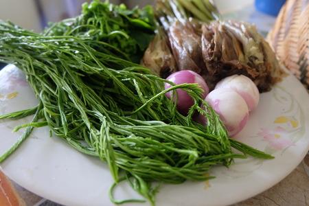 Acacia Pennata and shallot vegetable Stock Photo