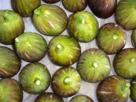 white fresh figs just collected Stock Photo