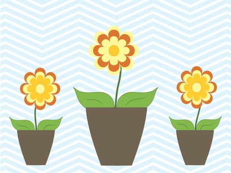 cosy: Seasonal colorful flowers in pot cosy home vector illustration Illustration