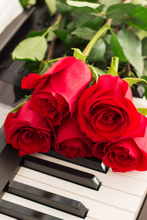 Red roses piano keys romantic music background.
