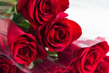 Texture red roses bouquet white background copy space.