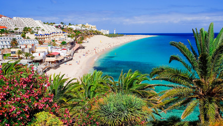 The beach Playa de Morro Jable with green palms, view on the town and the Atlantic coast. Location the Canary island Fuerteventura, Spain. Banque d'images