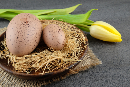 Two quail easter eggs on wooden plate and yellow tulip on dark background.