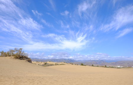 View on the dunes of Maspalomas and beautiful blue sky with white clouds and mountains on the Canary Island Gran Canaria, Spain.