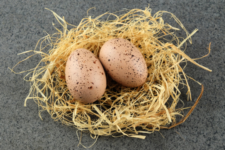 glower: Two quail easter eggs on  hay on dark background. Stock Photo