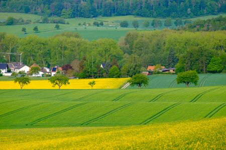 View on the agricultural fields of Bad Pyrmont in Germany.