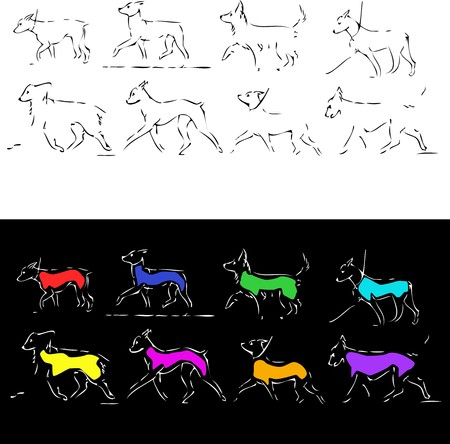 illustration of silhouettes of the dogs different sort. in different positions illustration