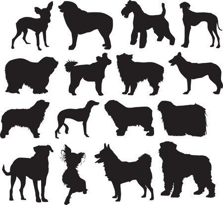 illustration of silhouettes of the dogs different sort. in different positions Stock Photo