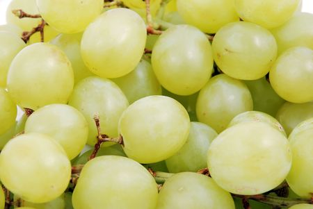 unpicked: beautiful mature bunch of white grapes Stock Photo
