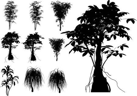 10 Tropical trees, grass, plant vector Vector