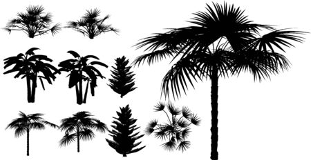 Tropical trees, grass, plant vector