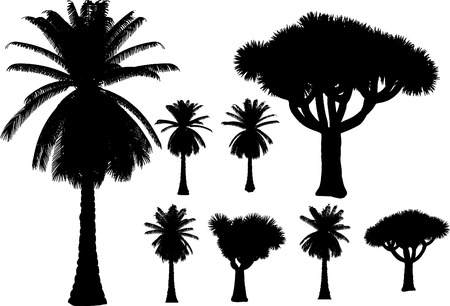 vector tropical palms and trees Vector