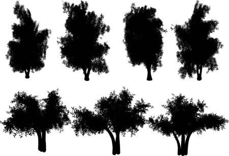 vector trees Stock Vector - 4382718