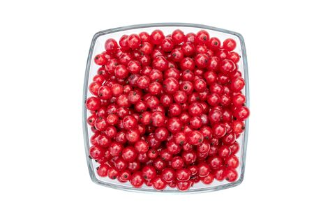 Redcurrants in glass bowl isolated on white background