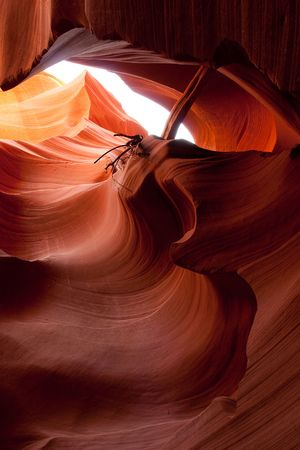 slot canyon: Lower Antelope Canyon, called Hasdeztwazi, or spiral rock arches by the Navajo, is located on Navajo land near Page, Arizona.